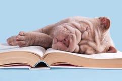 Book of Lullabies Royalty Free Stock Photos