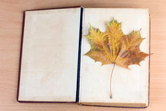 Book and maple leaf Royalty Free Stock Photos