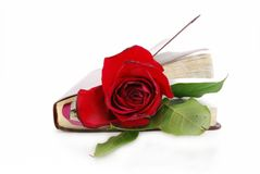 Book marker. Red rose and a book Stock Photos