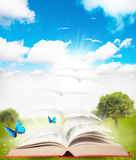 Book and nature Royalty Free Stock Image