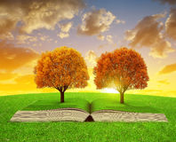 Book of nature with colorful autumn trees Stock Photos