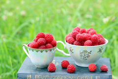 Book on nature. A cup of raspberry standing on the dark blue book. Harvest of raspberry Royalty Free Stock Photography