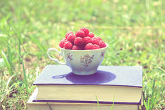 Book on nature. A cup of raspberry standing on the dark blue book. Harvest of raspberry Stock Photography