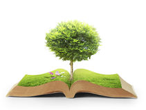 Book of nature with grass and tree Stock Photo