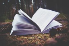 Book and nature. The book lies on the ground in the forest, its pages are open, around it are shishiki Stock Photo