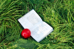 Book and the nectarine is on the green grass Stock Photo