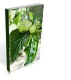 Book a  noni fruit Royalty Free Stock Photos