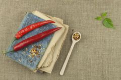 The book of old recipes. Chili peppers, ingredients for food preparation. Place for text. Royalty Free Stock Image