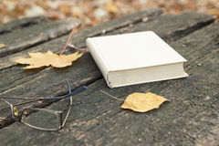 Book on old table and autumn leaves Royalty Free Stock Images