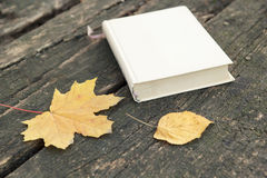 Book on old table and autumn leaves Stock Photos