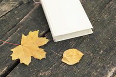 Book on old table and autumn leaves Royalty Free Stock Photography