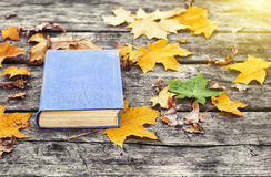 The book  on the old wooden table, covered in yellow maple leaves. Back to school. Education concept. Beautiful autumn background. Picturesque composition Royalty Free Stock Image