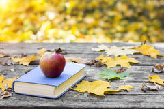 Book on the old wooden table, covered in yellow maple leaves. Back to school. Education concept. Beautiful autumn background. Picturesque composition at sunset Royalty Free Stock Photos