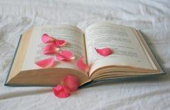 Book Stock Photos