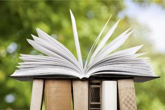 Book. Open icon business studying literature closeup Royalty Free Stock Photography