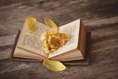 Book, Open, Pitched, Book Pages Royalty Free Stock Photo