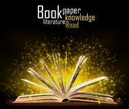 Book. Opened book with special light royalty free stock photography