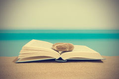 Book på stranden Arkivfoto