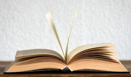 Book, Pages, Bookcase Stock Photos