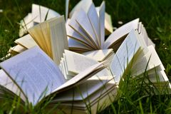 Book, Pages, Books Royalty Free Stock Photography