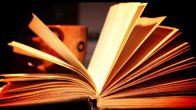 Book pages stock footage