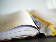 Book and pen. Ballpoint blue pen on an open book. Shallow depth of field