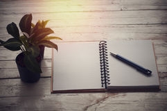 Book and pen on table with plant. Copy space Royalty Free Stock Image