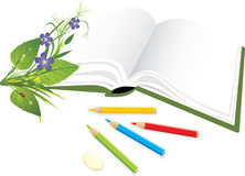 Book, pencils and bouquet of flowers with ladybird Royalty Free Stock Photography