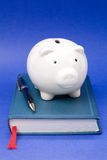 Book and Piggy Bank Stock Photos