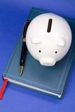 Book and Piggy Bank Royalty Free Stock Image