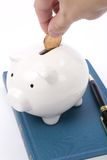 Book and Piggy Bank Stock Image