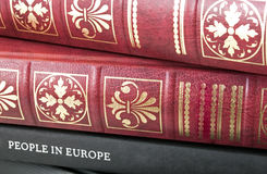 Book pile. Nice leather bound books with golden ornaments on a pile Stock Images