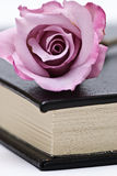 A book and a pink rose. Royalty Free Stock Image