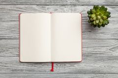 Book and plant. Book open texture blank notebook page Stock Photography