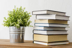Book and plant. On a shelf Royalty Free Stock Images