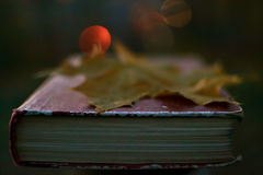 Book of poetry with fallen leaf on it Stock Photo