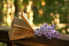 Book of poetry and lilac branch. Romantic evening in the country house-sunset, book of poetry and lilac branch royalty free stock photo