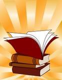 book read Royaltyfri Fotografi