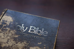 Book, Reading, The Holy Bible Stock Photography