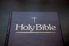 Book, Reading, The Holy Bible Stock Images
