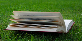 Book. Red book on the green Royalty Free Stock Photos
