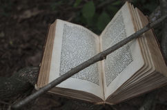 Book Returns to its Roots. An old book left deteriorating in the forest, returning to the trees it came from Stock Images