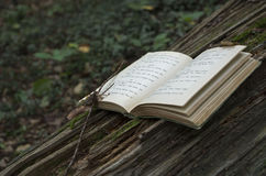 Book Returns to its Roots. An old book left deteriorating in the forest, returning to the trees it came from Royalty Free Stock Image