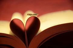 Book and rings Royalty Free Stock Photography