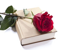 A book and a rose Stock Image
