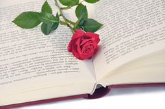 Book and rose. Royalty Free Stock Photo