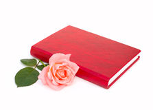 Book and rose. Red book and pink rose Stock Photography