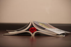 Book and rose. The red rose is sandwiched between the two books Royalty Free Stock Images