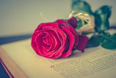 Book and rose. Book and a rose on the table Royalty Free Stock Images