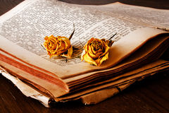 Book and roses Stock Photo
